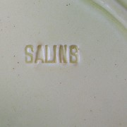 Salins mark